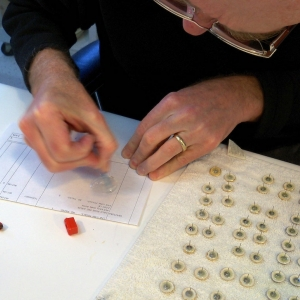 Regular size post earring assembly